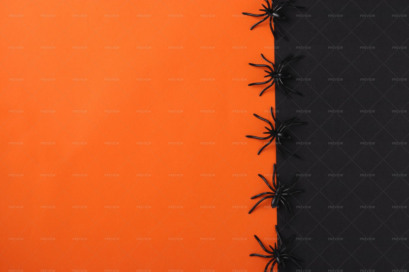 Halloween Background With Spiders: Stock Photos