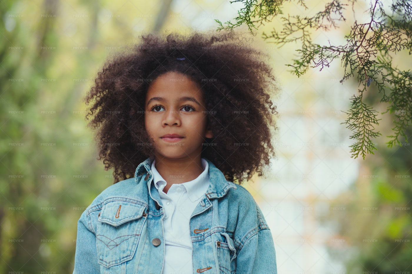 Portrait Of A Girl Looking Forward: Stock Photos