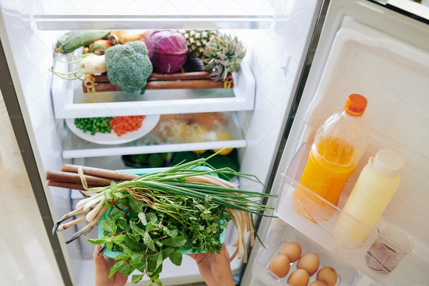 Loading Fridge With Food: Stock Photos
