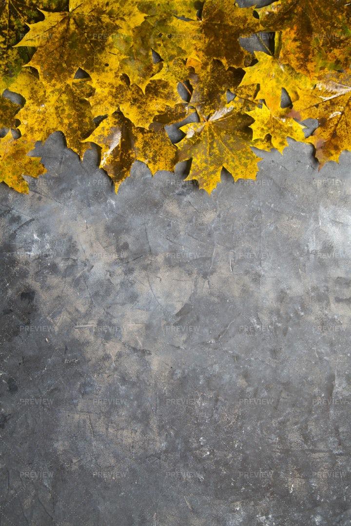 Autumn Background: Stock Photos