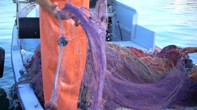 Fisherman Pulling And Fixing Net: Stock Video