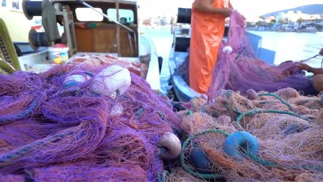 Fisherman Repairing Fishing Lines: Stock Video
