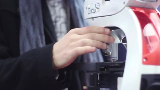 Man Using A Laboratory Microscope: Stock Video