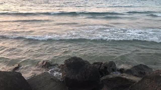 Sea Waves On The Rocks: Stock Video