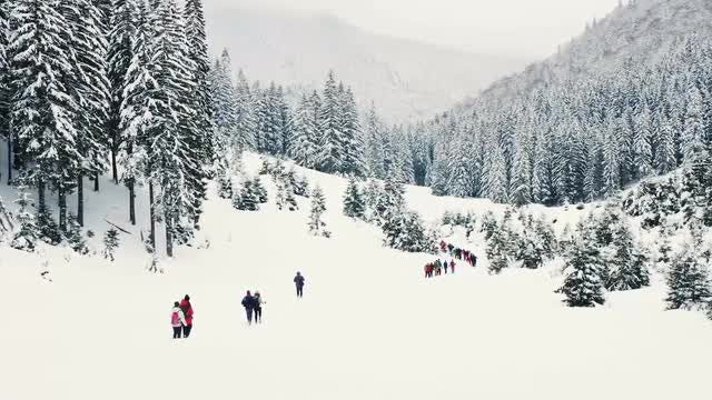 Tourists Walk Up Snowy Mountain: Stock Video
