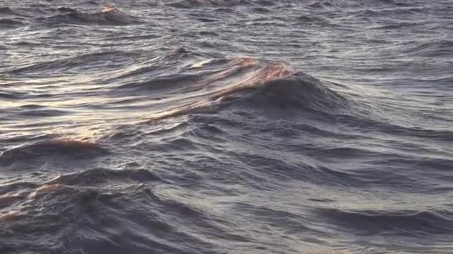 Large Ocean Waves At Sunset: Stock Video