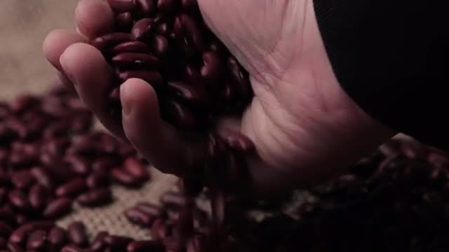 Touching And Feeling Kidney Beans: Stock Video