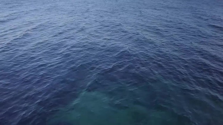 Aerial Shot Of The Sea: Stock Video