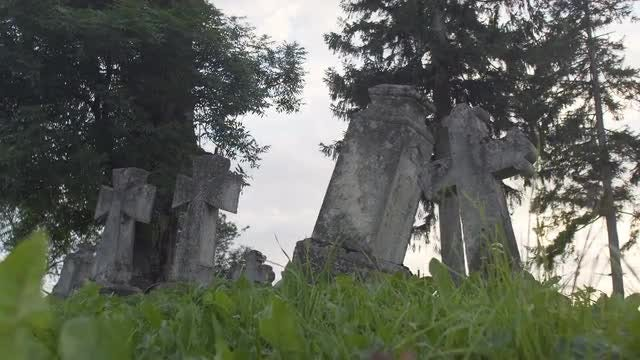 Old Concrete Crosses And Trees: Stock Video