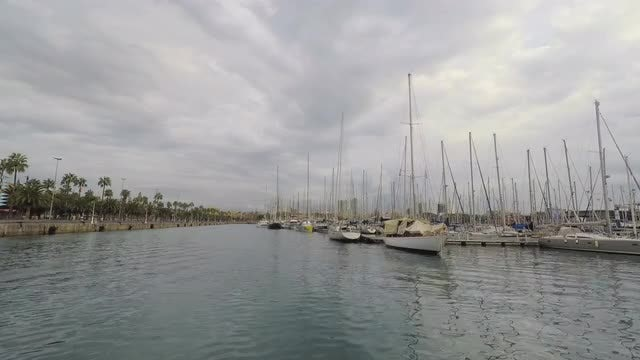 Sailboats Docked At Port: Stock Video