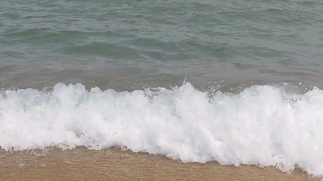 Seashore Washed With Waves: Stock Video