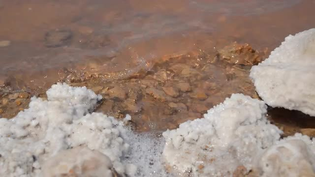 Salt Forming On Lake Shore : Stock Video