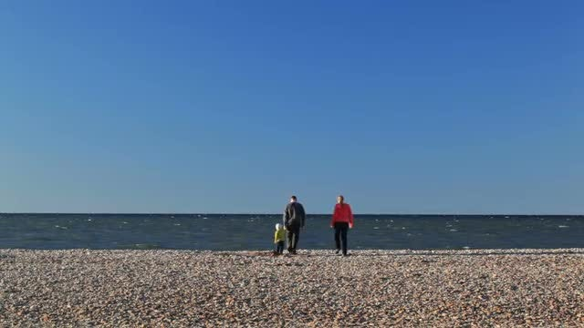 Family On The Beach: Stock Video