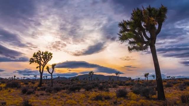 Colorful Sunset Over Desert: Stock Video