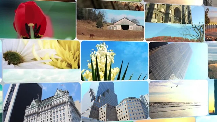 Photo Row: After Effects Templates