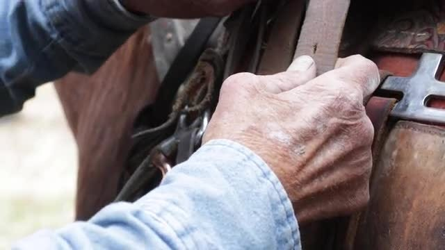 Old Man Preparing A Saddle : Stock Video