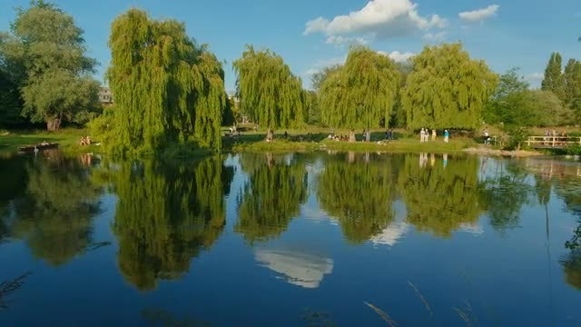 A Summer Day Out By The Lake: Stock Video
