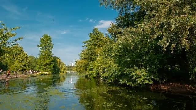 St James Park, London, UK: Stock Video