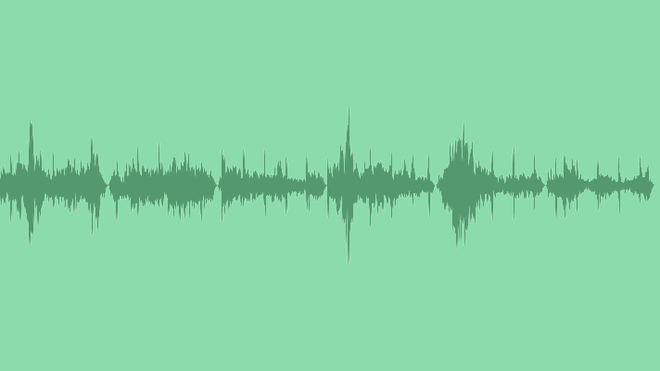Sound Of The City And Birds Pack: Sound Effects