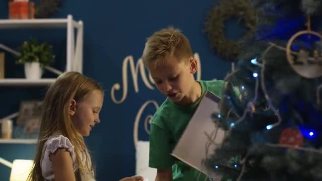 Siblings Decorating Christmas Tree: Stock Video