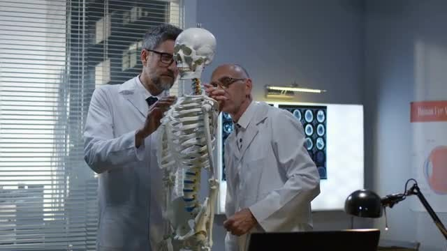 Doctors Look At Skeleton: Stock Video