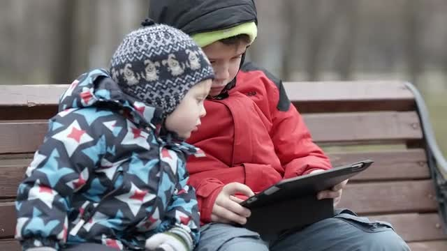 Brothers In Park With Tablet: Stock Video