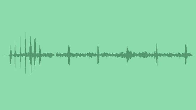 Forest Birds: Sound Effects