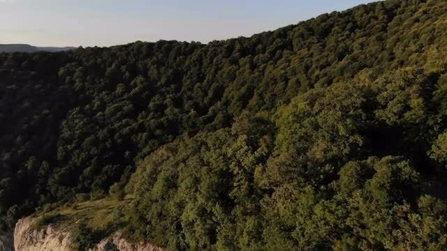 Aerial Shot Of Mountain Forest: Stock Video