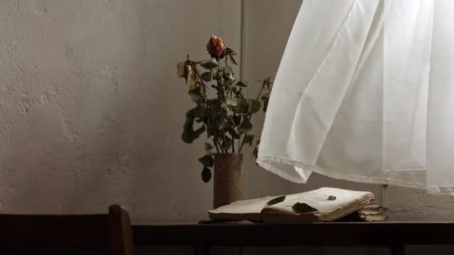 Study Room With Wilted Roses: Stock Video