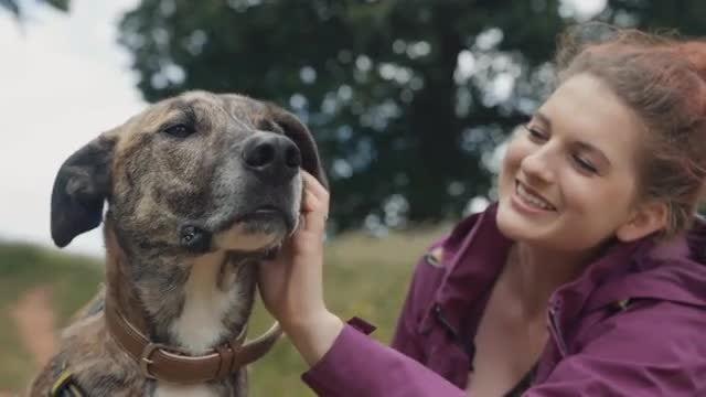 Young Woman Petting Dog Outdoors: Stock Video