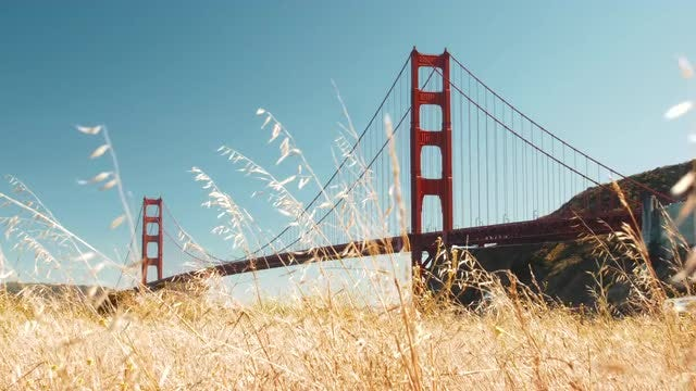 Golden Gate Bridge And Meadow: Stock Video