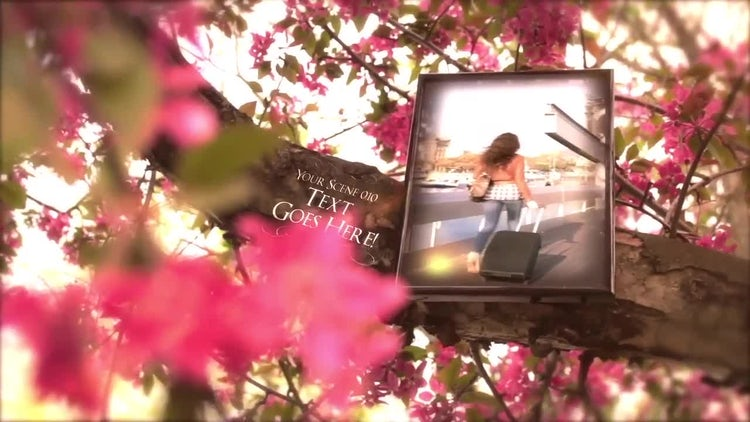Tree of Memories: After Effects Templates