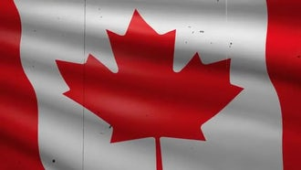 Canada Flag Background: Motion Graphics