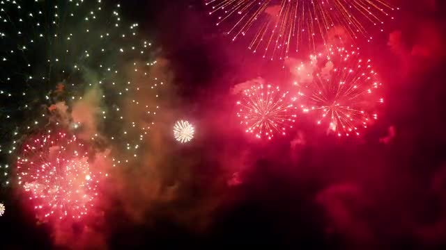 Fireworks Decorating The Sky: Stock Video