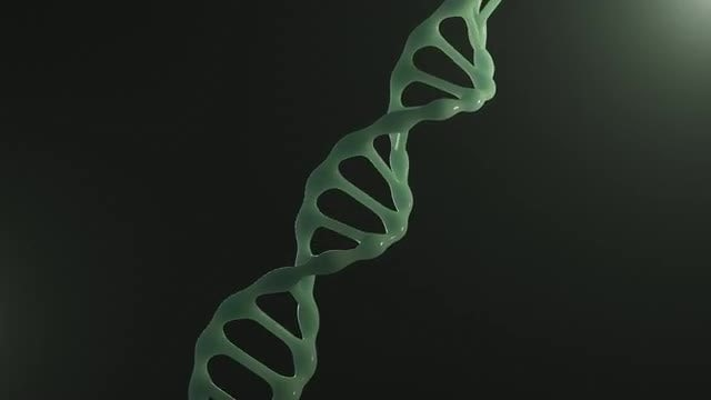 DNA: Stock Motion Graphics