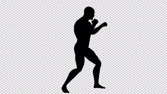 MMA Fighting Stance: Stock Motion Graphics