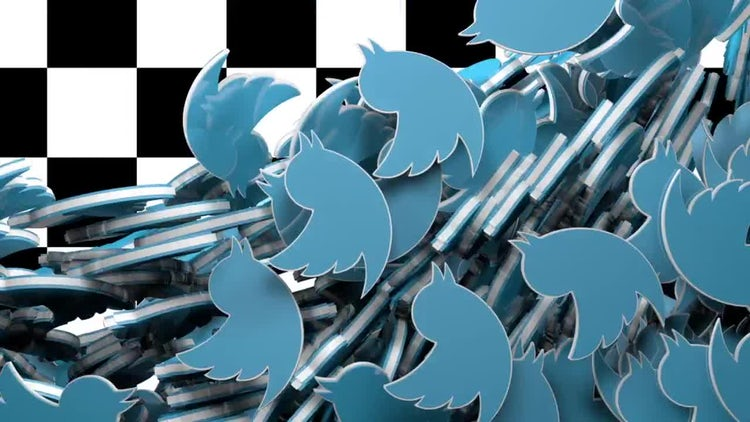 Twitter logo fill transition: Stock Motion Graphics