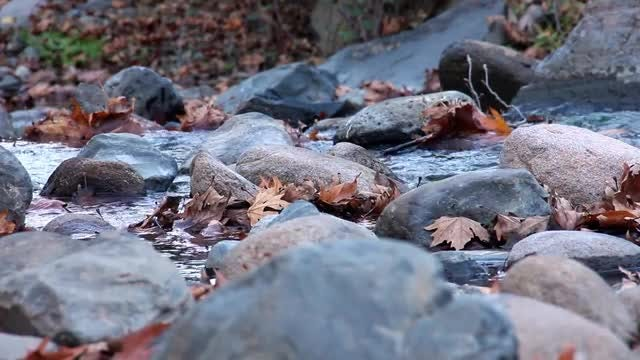 Clean Water Flowing On Rocks: Stock Video