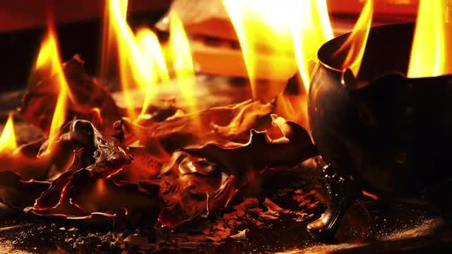 Pile Of Banknotes Burning: Stock Video