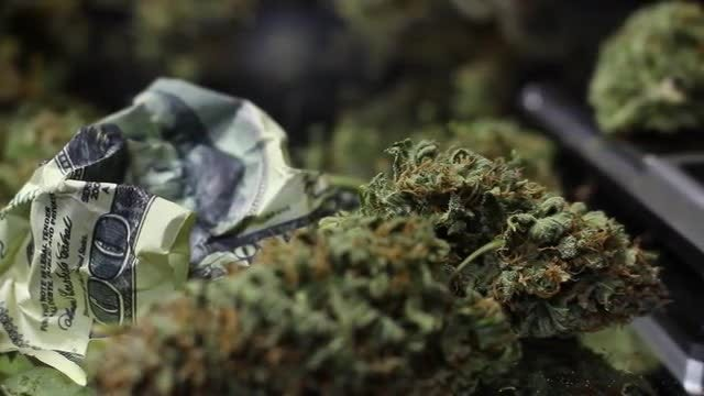 Dry Cannabis Leaves And Dollars: Stock Video