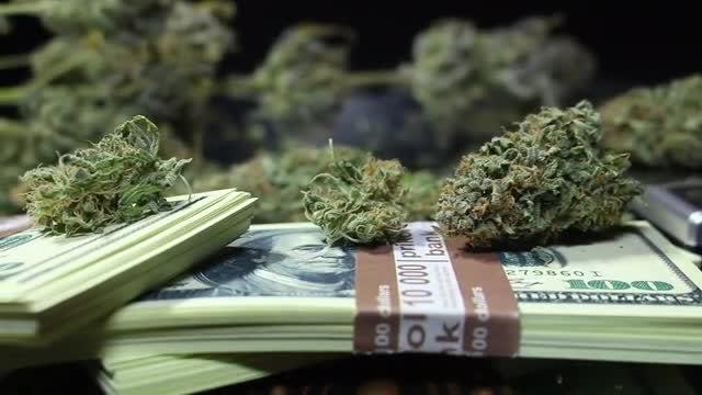 Marijuana Buds And Dollar Bills: Stock Video