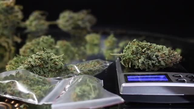 Marijuana Buds And Weighing Scale: Stock Video