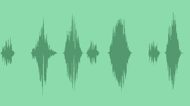 Bear: Sound Effects