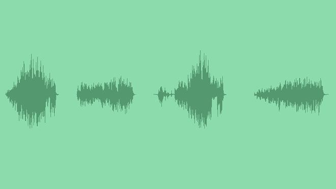 Sheep 'Baa': Sound Effects