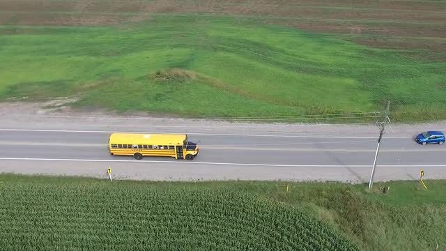 School Bus Cruising The Country: Stock Video