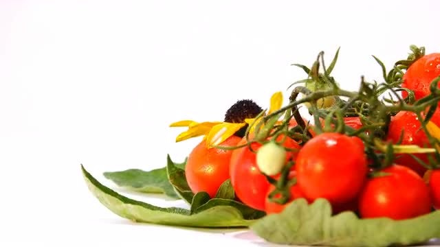 Small Tomatoes Presentation: Stock Video