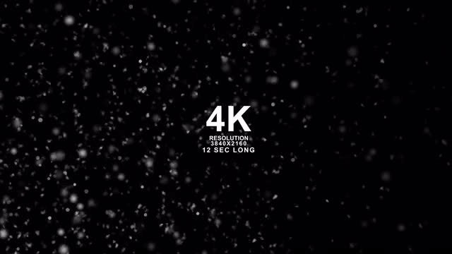 Snow Particles Pack: Stock Motion Graphics