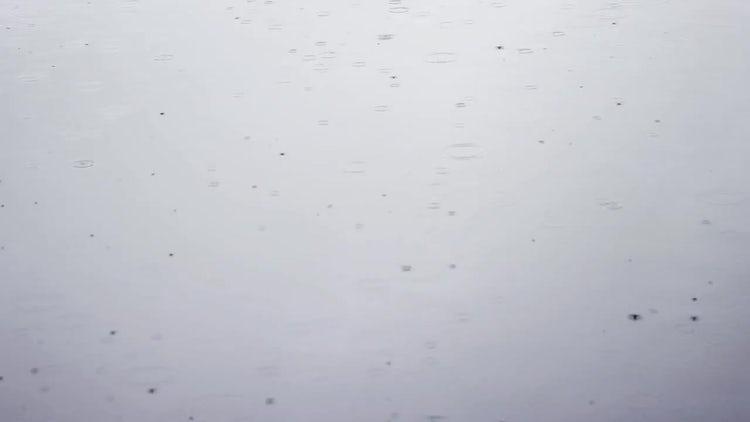 Autumn Rain On Gray Ground: Stock Video