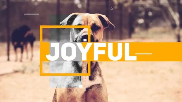 Joyful Opener: After Effects Templates