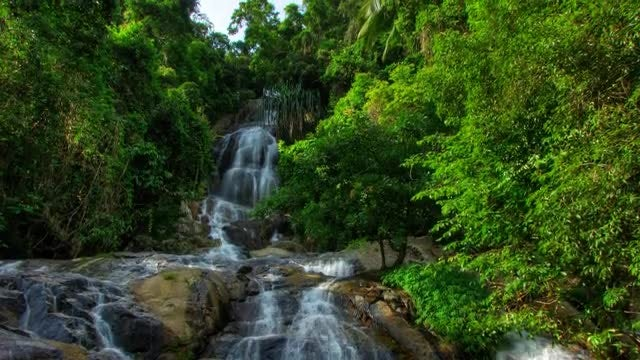 Tropical Waterfall Streams Time Lapse: Stock Video